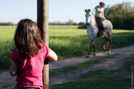 little-girl-and-horse.jpg